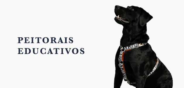 Dog U - Peitoral Educativo